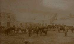 An old photo of a farmyard